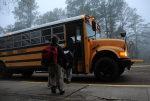Free Bus Rides for Eugene Students
